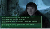 Beautiful, Memes, and Smh: Bran  Tell Sansa Littlefinger got father killed  Tell Sansa that Jon is a Targaryen.  Tell sansa the white walkers are closer than everyone  thinks.  Tell Sansa she 1ooked beautiful the night she was  horrifically raped. <Smile.> Bran is colder than the Night's King smh