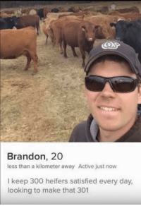 The Realest: Brandon, 20  less than a kilometer away Active just now  I keep 300 heifers satisfied every day,  looking to make that 301 The Realest