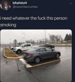 Club, Smoking, and Tumblr: bRaNdoN  @coochiecrumbs  i need whatever the fuck this person  smoking laughoutloud-club:  For real