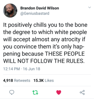 If you cross the border illegally or resist arrest you get whats coming to you: Brandon David Wilson  @Geniusbastard  It positively chills you to the bone  the degree to which white people  will accept almost any atrocity if  you convince them it's only hap-  pening because THESE PEOPLE  WILL NOT FOLLOW THE RULES  12:14 PM 16 Jun 18  4,918 Retweets 15.3K Likes If you cross the border illegally or resist arrest you get whats coming to you