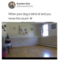 Af, Funny, and Couch: Brandon Ruiz  @BrandonRuizDj  When your dog is blind af and you  move the couch  53 Ohmygahh