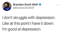 Struggle, Depression, and Good: Brandon Scott Wolf  @BrandonEsWolf  I don't struggle with depression.  Like at this point I have it down.  I'm good at depression.