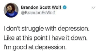 Memes, Struggle, and Depression: Brandon Scott Wolf  @BrandonEsWolf  I don't struggle with depression  Like at this point I have it down.  I'm good at depression. I have come to terms with co existing with my demons memesapp