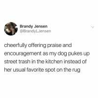 Memes, New Year's, and Trash: Brandy Jensen  @BrandyLJensen  cheerfully offering prai  encouragement as my dog pukes up  street trash in the kitchen instead of  her usual favorite spot on the rug  se and only bringing good vibes into the new year ✨🙆🏻‍♂️✨
