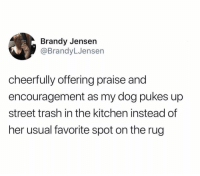 It's the little things.: Brandy Jensen  @BrandyLJensen  cheerfully offering praise and  encouragement as my dog pukes up  street trash in the kitchen instead of  her usual favorite spot on the rug It's the little things.