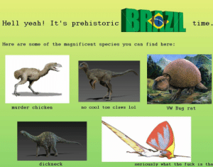 Lol, Yeah, and Brazil: BRAZIL  Hell yeah! It's prehistoric  time  Here are some of the magnificent species you can find here:  murder chicken  no cool toe claws lol  VW Bug rat  dickneck  seriously what the fuck is tha