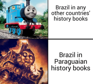 Books, Brazil, and History: Brazil in any  other countries'  history books  Brazil in  Paraguaian  history books 90% of the male population