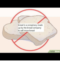 Af, Fake, and Memes: bread is a conspiracy made  up by the bread company  to sell more bread  ow Tin foil hats to go around. And toaster ovens. BECAUSE TOASTERS ARE FAKE IF BREAD IS FAKE STAY WOKE AF badsciencejokes