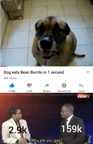 Are you not entertained? by thicculant_memes MORE MEMES: BREAK  Dog eats Bean Burrito in 1 second  M views  2.9K  Share Download  159K  Save  159k  2.9k  Why are you gayg Are you not entertained? by thicculant_memes MORE MEMES
