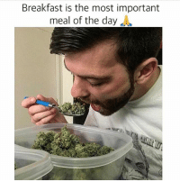 😋 @thekindpen: Breakfast is the most important  meal of the day  J 😋 @thekindpen