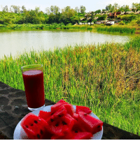 Breakfast @kurifturesortspa :) It is one of first crops to be domesticated, it originated from from the upper Niger River valley, through the lake Chad basin & Dar Fur. Watermelons are mostly water — about 92 percent — but this refreshing fruit is soaked with nutrients. Each juicy bite has significant levels of vitamins A, B6 and C, lots of lycopene, antioxidants and amino acids. There's even a modest amount of potassium. Plus, this quintessential summer snack is fat-free & is very low in sodium. Foods that are high in antioxidants and amino acids allow your body to function optimally. Antioxidants help prevent damage, and cancer. Amino acids are the basic building block for protein, and protein is used in virtually every vital function in the body. Scientists have taken notice of watermelon's high lycopene levels — about 15 to 20 milligrams per 2-cup serving, according to the National Watermelon Promotion Board — some of the highest levels of any type of fresh produce. Lycopene is a phytonutrient, which is a naturally occurring compound in fruits and vegetables that reacts with the human body to trigger healthy reactions. It is also the red pigment that gives watermelons, tomatoes, red grapefruits and guavas their color. Health benefits of Watermelon Watermelon is the fruit that is free in fat and also an excellent source of Vitamin B6, A and C. It contains lycopene which provides the color of bright red, pink and deep red. It is a great source of antioxidant. Potassium helps to reduce the blood pressure and supports the functions of body organs. It is a great source of minerals and vitamins that helps to prevent the health illness such as obesity, mortality, heart disease, diabetes, enhance hair and complexion and increases energy. Viagra effect Lycopene and Beta carotene is found in the watermelons that helps to relax the blood vessels. Citrulline converts into arginine when the Watermelon is consumed. Arginine is helpful for the circulatory system and heart that also helps to maintain the immune health. Arginine enhances nitric oxide that helps to relax the blood vessels and also prevents erectile dysfunction. Below for more famfoods: Breakfast @kurifturesortspa :) It is one of first crops to be domesticated, it originated from from the upper Niger River valley, through the lake Chad basin & Dar Fur. Watermelons are mostly water — about 92 percent — but this refreshing fruit is soaked with nutrients. Each juicy bite has significant levels of vitamins A, B6 and C, lots of lycopene, antioxidants and amino acids. There's even a modest amount of potassium. Plus, this quintessential summer snack is fat-free & is very low in sodium. Foods that are high in antioxidants and amino acids allow your body to function optimally. Antioxidants help prevent damage, and cancer. Amino acids are the basic building block for protein, and protein is used in virtually every vital function in the body. Scientists have taken notice of watermelon's high lycopene levels — about 15 to 20 milligrams per 2-cup serving, according to the National Watermelon Promotion Board — some of the highest levels of any type of fresh produce. Lycopene is a phytonutrient, which is a naturally occurring compound in fruits and vegetables that reacts with the human body to trigger healthy reactions. It is also the red pigment that gives watermelons, tomatoes, red grapefruits and guavas their color. Health benefits of Watermelon Watermelon is the fruit that is free in fat and also an excellent source of Vitamin B6, A and C. It contains lycopene which provides the color of bright red, pink and deep red. It is a great source of antioxidant. Potassium helps to reduce the blood pressure and supports the functions of body organs. It is a great source of minerals and vitamins that helps to prevent the health illness such as obesity, mortality, heart disease, diabetes, enhance hair and complexion and increases energy. Viagra effect Lycopene and Beta carotene is found in the watermelons that helps to relax the blood vessels. Citrulline converts into arginine when the Watermelon is consumed. Arginine is helpful for the circulatory system and heart that also helps to maintain the immune health. Arginine enhances nitric oxide that helps to relax the blood vessels and also prevents erectile dysfunction. Below for more famfoods