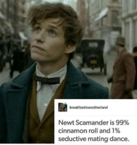 Dancing, Memes, and Dance: breakfastinanotherland  Newt Scamander is 99%  cinnamon roll and 1%  seductive mating dance. He is so cute!! 😍😍  ~Andromeda
