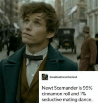 im completely in love: breakfastinanotherland  Newt Scamander is 99%  cinnamon roll and 1%  seductive mating dance. im completely in love