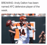 Nfl, Andy Dalton, and Been: BREAKING: Andy Dalton has been  named AFC defensive player of the  week  14