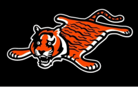 Cincinnati Bengals, Football, and Nfl: BREAKING: Cincinnati Bengals release new logo that will be used everytime they play in primetime https://t.co/zp1JnhRibh