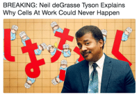 Neil deGrasse Tyson: BREAKING: Neil deGrasse Tyson Explains  Why Cells At Work Could Never Happen