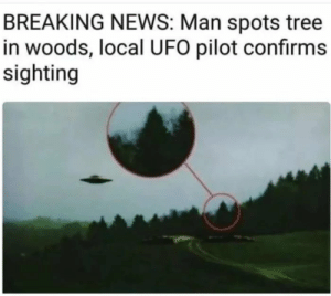 Crazy, Dank, and Memes: BREAKING NEWS: Man spots tree  in woods, local UFO pilot confirms  sighting Crazy shit by ZoozBuff FOLLOW HERE 4 MORE MEMES.