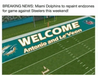 Memes, Miami Dolphins, and Breaking News: BREAKING NEWS: Miami Dolphins to repaint endzones  for game against Steelers this weekend!  Veon  Le and Antonio Steelers vs Dolphins