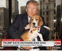 CLINTON NEWS NETWORK! #NextFakeTrumpVictim: BREAKING NEWS  TRUMP EATS DEFENSELESS DOG  Anonymous source confirms Trump ate the dog in China 47 years ago  CNN  9:05 PM ET  DON LEMON CLINTON NEWS NETWORK! #NextFakeTrumpVictim