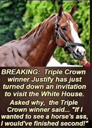 "25 Brutally Hilarious Memes Proving Trump Is A Joke: http://bit.ly/2wyx073: BREAKING: Triple Crowin  winner Justity has just  turned down an invitation  to visit the White House  Asked why, the Triple  Crown winner said... ""If I  wanted to see a horse's ass,  I would ve finished second!"" 25 Brutally Hilarious Memes Proving Trump Is A Joke: http://bit.ly/2wyx073"