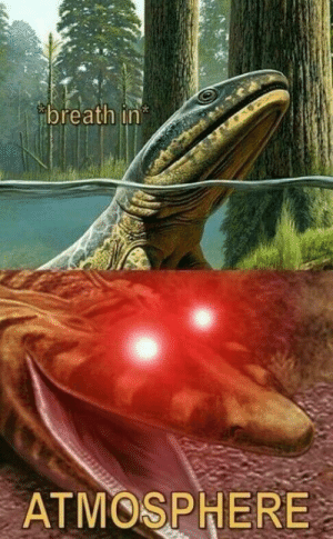 fakehistory: Amphibians emerge from the water for the first time (400,000,000BC): breath in  ATMOSPHERE fakehistory: Amphibians emerge from the water for the first time (400,000,000BC)