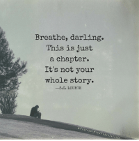 Memes, 🤖, and Darling: Breathe, darling.  This is just  a chapter.  It's not your  whole story.  S.C. LOURIE  PeacefulMin  Peacefu ILif