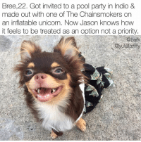 Memes, Party, and Pool: Bree,22. ot invited to a pool party in Indio  &  made out with one of The Chainsmokers on  an inflatable unicorn. Now Jason knows how  it feels to be treated as an option not a priority.  bark  @yutafamity Hot damn Bree. chroniclesofbree dogsofcoachella teambree @yutafamily