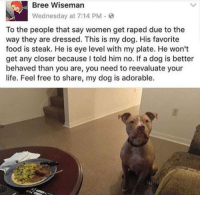 Food, Life, and Free: Bree Wiseman  Wednesday at 7:14 PM.  To the people that say women get raped due to the  way they are dressed. This is my dog. His favorite  food is steak. He is eye level with my plate. He won't  get any closer because I told him no. If a dog is better  behaved than you are, you need to reevaluate your  life. Feel free to share, my dog is adorable. <p>everyone needs to see this.</p>