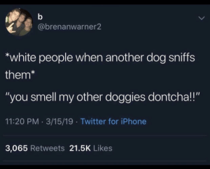 "Iphone, Smell, and Twitter: @brenanwarner2  white people when another dog sniffs  them*  ""you smell my other doggies dontcha!!""  11:20 PM 3/15/19 Twitter for iPhone  3,065 Retweets 21.5K Likes I would say we all do this"
