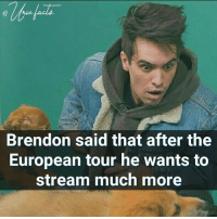 Well we stan one (1) gamer-twitcher: Brendon said that after the  European tour he wants to  stream much more Well we stan one (1) gamer-twitcher