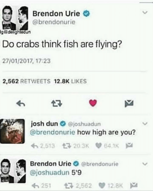 Meirl: Brendon Urie  @brendonurie  delightedun  Do crabs think fish are flying?  27/01/2017, 17:23  2,562 RETWEETS 12.8K LIKES  josh dun O ejoshuadun  @brendonurie how high are you?  Brendon Urie @brendonurie  @joshuadun 5'9  251 2,562 12.8K Meirl