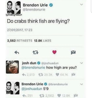 Me irl: Brendon Urie  @brendonurie  g&dalightedun  Do crabs think fish are flying?  27/01/2017, 17:23  2,562 RETWEETS 12.8K LIKES  josh dun@joshuadun  @brendonurie how high are you?  2.513 203K  64.1K  Brendon Urie @brendonurie  @joshuadun 5'9  12 aK  t32,562  251 Me irl