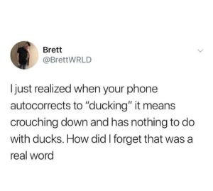 """meirl: Brett  @BrettWRLD  just realized when your phone  autocorrects to """"ducking"""" it means  crouching down and has nothing to do  with ducks. How did I forget that was a  real word meirl"""