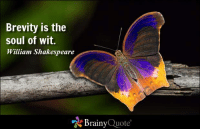 Brevity is the soul of wit. - William Shakespeare http://www.brainyquote.com/quotes/authors/w/william_shakespeare.html #famousquote #QOTD: Brevity is the  soul of wit.  William Shakespeare  Brainy  Quote Brevity is the soul of wit. - William Shakespeare http://www.brainyquote.com/quotes/authors/w/william_shakespeare.html #famousquote #QOTD