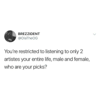 Tough one 🤔 who would y'all pick? ⬇️⬇️ . KraksTV: BREZZIDENT  @olaTheOG  You're restricted to listening to only 2  artistes your entire life, male and female,  who are your picks? Tough one 🤔 who would y'all pick? ⬇️⬇️ . KraksTV