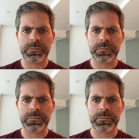 Brian did the Face App thing: Brian did the Face App thing