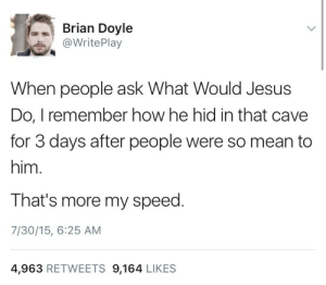 meirl: Brian Doyle  @WritePlay  When people ask What Would Jesus  Do, I remember how he hid in that cave  for 3 days after people were so mean to  him.  That's more my speed  7/30/15, 6:25 AM  4,963 RETWEETS 9,164 LIKES meirl
