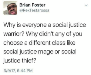 Justice, Thief, and Warrior: Brian Foster  @RexTestarossa  Why is everyone a social justice  warrior? Why didn't any of you  choose a different class like  social justice mage or social  justice thief?  3/9/17, 6:44 PM Social DD