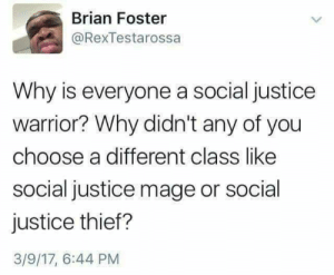 Social Justice Rogue by therealmeant MORE MEMES: Brian Foster  @RexTestarossa  Why is everyone a social justice  warrior? Why didn't any of you  choose a different class like  social justice mage or social  justice thief?  3/9/17, 6:44 PM Social Justice Rogue by therealmeant MORE MEMES