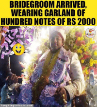Indianpeoplefacebook, Garland, and Raja: BRIDEGROOMARRIVED,  WEARING GARLAND OF  HUNDRED NOTES OF RS 2000  LA  au  colours.com Dulhe Raja...