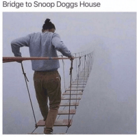 Friends, Memes, and Snoop: Bridge to Snoop Doggs House Dm to all the friends you'd cross this bridge with 🔥💯
