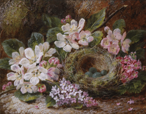 brigantias-isles:    Apple Blossom and a Bird's Nest   by Oliver Clare : brigantias-isles:    Apple Blossom and a Bird's Nest   by Oliver Clare