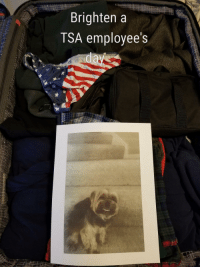 <p>I like to leave Easter Eggs in my luggage when traveling abroad, just in case it gets screened.</p>: Brighten a  TSA employee's <p>I like to leave Easter Eggs in my luggage when traveling abroad, just in case it gets screened.</p>
