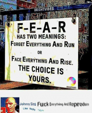 The choice is yours: BRIGHTVIBES  F-E-A-R  HAS TWO MEANINGS:  FORGET EVERYTHING AND RUN  FACE EVERYTHING AND RISE.  THE CHOICE IS  YOURS  OR  BRIGHTVIBES  Johnny Sins Fuck Everything And Reprodw  Like Reply 16n The choice is yours