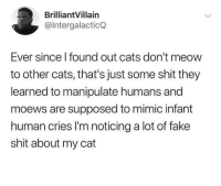 manipulate: BrilliantVillain  @lntergalacticQ  Ever since l found out cats don't meow  to other cats, that's just some shit they  learned to manipulate humans and  moews are supposed to mimic infant  human cries I'm noticing a lot of fake  shit about my cat