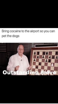 Cocaine: Bring cocaine to the airport so you can  pet the dogs  Outstanding ove