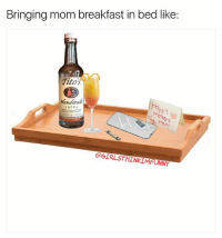 The nutritious way to start your special day 🙌🏻😍❤️😂 girlsthinkimfunnytwitter happymothersday breakfastinbed momsday sarcasticaf onlyjokes: Bringing mom breakfast in bed like  Titos  Handmade  VODKA  @GIRLSTHINKIMFONNY The nutritious way to start your special day 🙌🏻😍❤️😂 girlsthinkimfunnytwitter happymothersday breakfastinbed momsday sarcasticaf onlyjokes