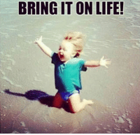 lol bring it on life lolmemes meme memes daily facts haha dailyfunny quoteoftheday quotes post realtalk forrealtho forreal 💯 alldayeveryday keepit100 🎯: BRINGIT ON LIFE! lol bring it on life lolmemes meme memes daily facts haha dailyfunny quoteoftheday quotes post realtalk forrealtho forreal 💯 alldayeveryday keepit100 🎯