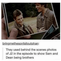 Memes, 🤖, and  Behind the Scene: bringmethespnfalloutphan:  They used behind the scenes photos  of J2 in the episode to show Sam and  Dean being brothers Why is this sad