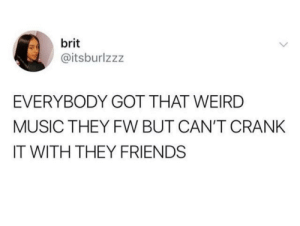Dank, Friends, and Homie: brit  @itsburlzzz  EVERYBODY GOT THAT WEIRD  MUSIC THEY FW BUT CAN'T CRANK  IT WITH THEY FRIENDS When you find that friend that likes it too, they're a homie for life. by Summy1XD MORE MEMES